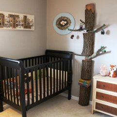 Firewood tree in Olson's nursery (2015)